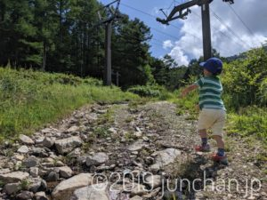 神社に向かって坂を登る息子