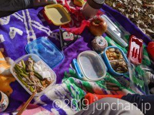 公園でお弁当を食べる