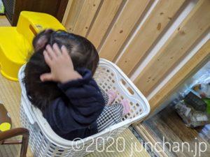 カゴの中で頭を洗う娘