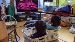 兄妹そろってカゴに入ってテレビを観る