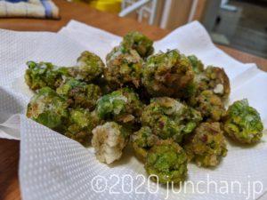 庭に生えていたふきのとうを天ぷらにしてみた