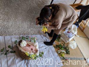 新生児フォト 撮影の様子