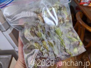 タラの芽が袋にいっぱい