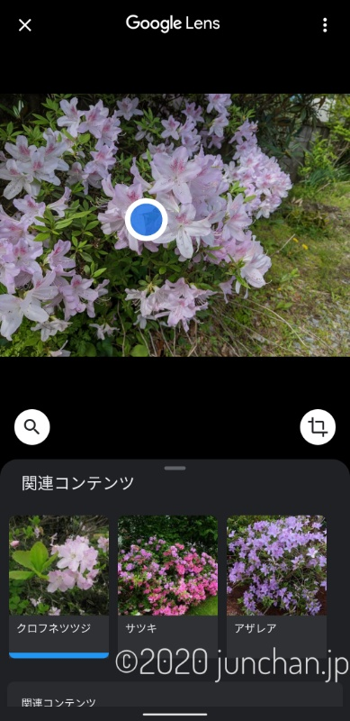 Googleレンズで写真を解析