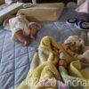 生後3ヶ月の娘。背バイで突き進むし、ものを掴みはじめた。