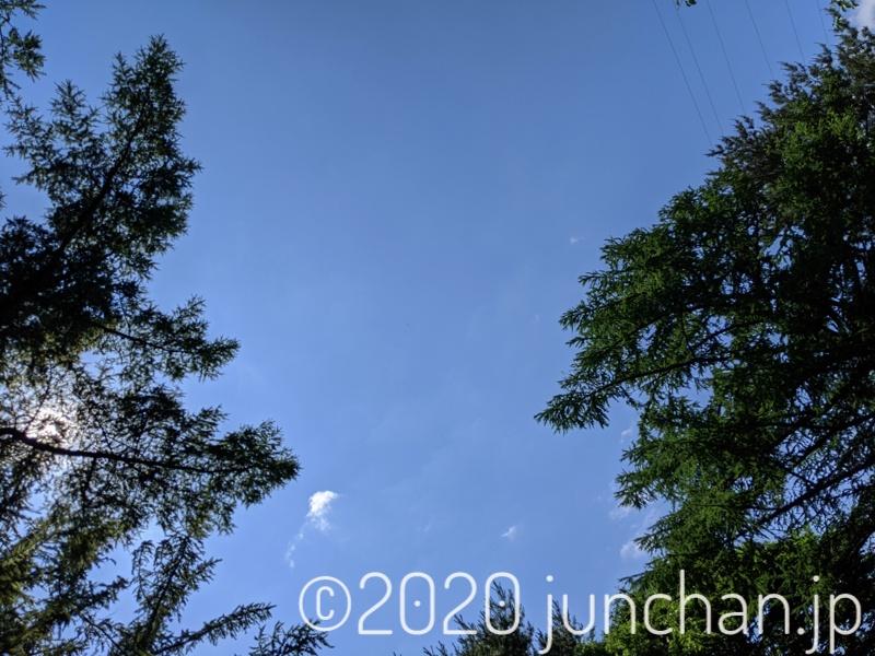 とってもいい天気で青空が広がっていた