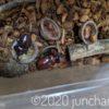 カブトムシの食欲がすごい!夜に昆虫ゼリーをあげて、朝見ると、器の底まできれいに舐