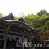 「戸隠神社」をフラッと参拝。思いつきでやってきて、サクッとお参りしてきた。