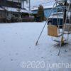 雪が軽く積もった庭