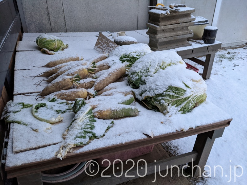 軒先に置いていた野菜も雪に隠れていた