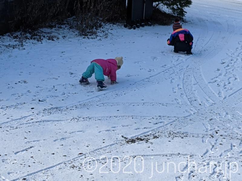 雪の中で遊ぶ子どもたち