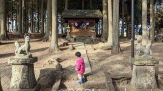 初詣は裏の神社へ