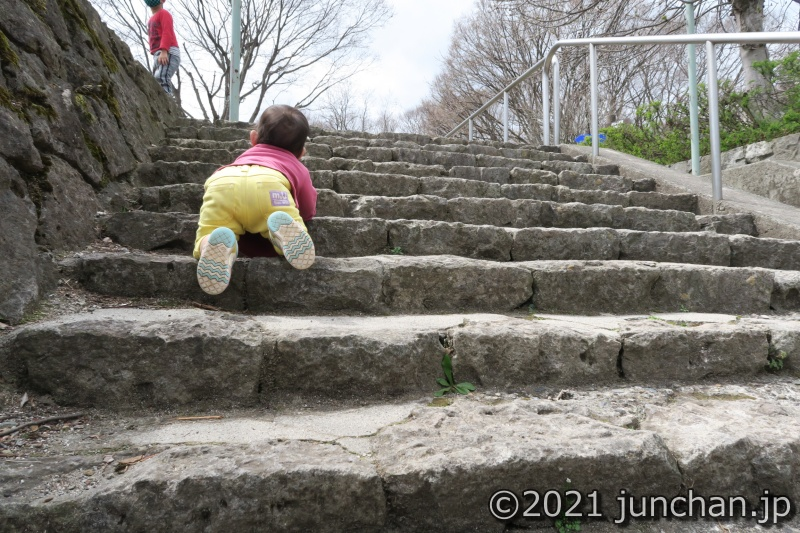 階段を見ると登りたがる娘